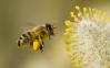 Космически технологии вдигат добива на мед