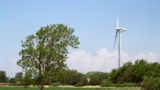 Изкуствено дърво събира енергия от вятъра