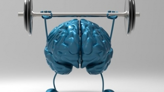 Фитнес за мозъка