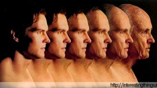 Нов метод подмладява човешките клетки