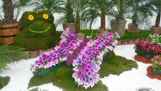 Бургас ще има отново национална изложба на цветя през май