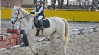 Конна база Виница събра стотици почитатели на коня на Тодоровден