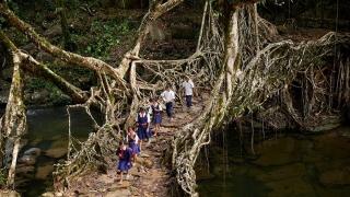 Кои са най-необичайните пътища до училище - с кану или по корени на дърво?