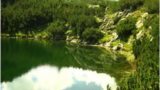 """Национален парк """"Пирин"""" влезе в топ 10 на на парковете в Европа"""