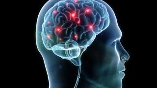 Мозъкът вижда думите като изображения