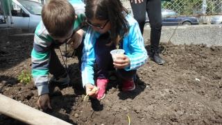 Деца станаха биоградинкови приятели и учиха на открито