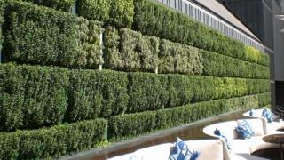 Обсъждат се вертикални паркове по стените на панелките
