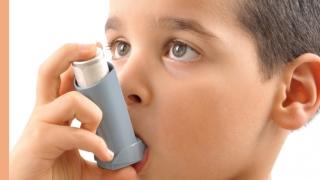 Днес е ден за борба с бронхиалната астма. Кои са причинителите?