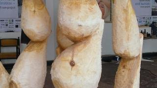 Скулптури от дърво и камък даряват на Варна млади автори