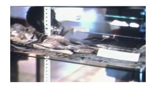 Уфолози показаха снимки на извънземно от Ню Мексико