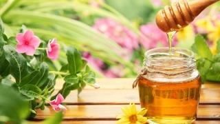 На бурканчето с мед вече ще пише страната, в която е добит
