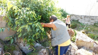 Доброволци чистиха потъналите в бурени Римски терми