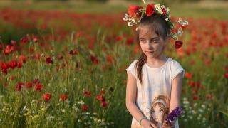 Фестивал на дивите цветя започна в Родопите
