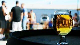 Наздраве за Международния ден на бирата!