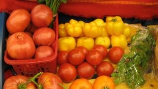 """Празник на плодородието търси плодове и зеленчуци като за """"Гинес"""""""
