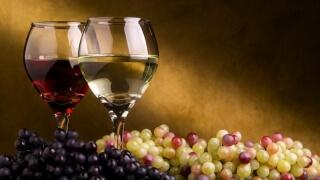 Над 300 винари на световна браншова конференция в Пловдив