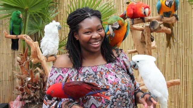 Най-голямата изложба на папагали пристига във Варна