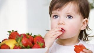 Учат деца на разумно хранене в две варненски детски градини