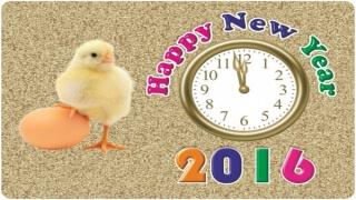 Добра Нова година от Добрини.бг!